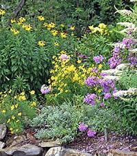 Gardening For The Summer