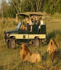 Kenya Family Safari, luxury vacations