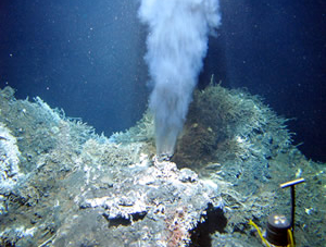Deep Sea Vents Ecuador – Wonder of The World