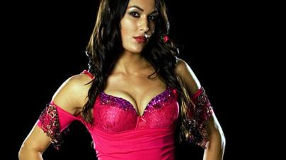 Brie Bella – WWE Diva