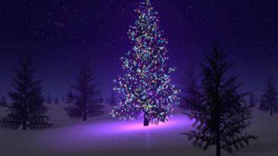 Christmas Tree Themes For 2013