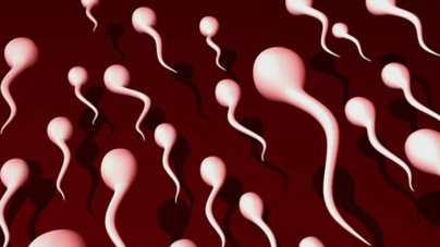 7 Signs Your Semen Is Healthy and Strong