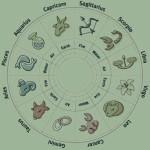 Business Horoscope today