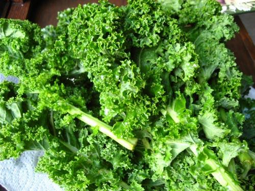 Kale food