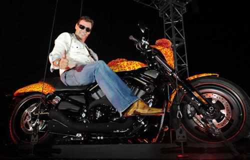 one Million Harley-Davidson