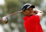 Golfers - Tiger Woods
