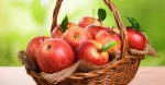Power Fruits for Better Health