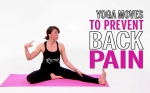 Yoga Poses Back Is in Knots